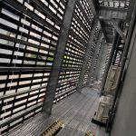 ファインフロア+ビルパネ施工後2